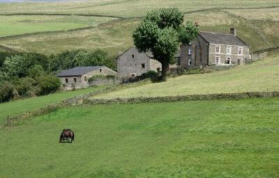 Imagen de un rincón del mundo: el campo.