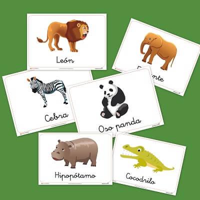 Bits de inteligencia: Fichas de Animales salvajes