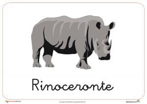 Fichas de Animales Salvajes: Rinoceronte