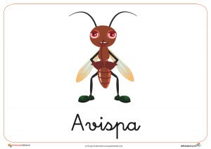 Fichas de animales e insectos: Avispa