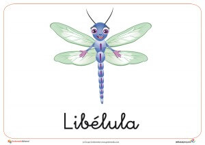 Fichas de animales e insectos: Libélula