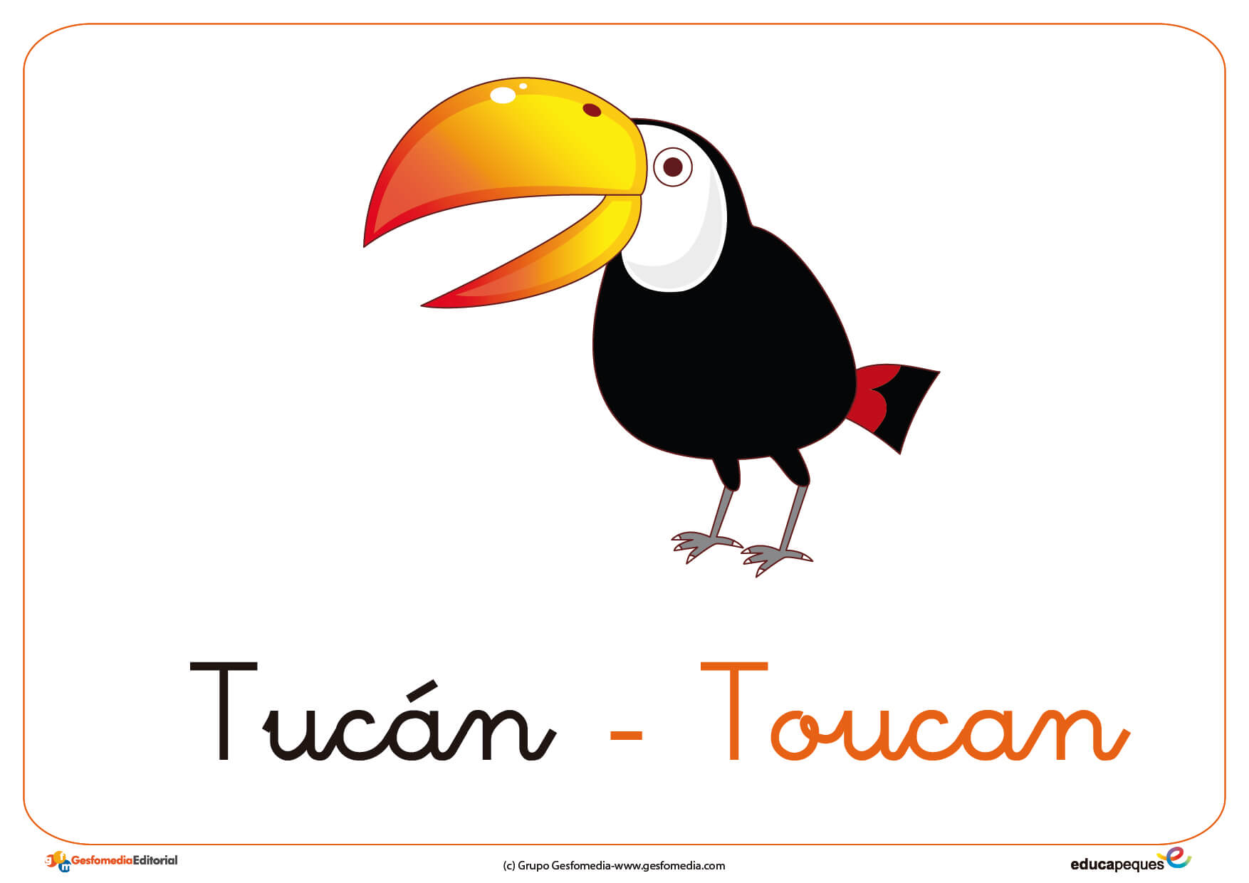 Tucan Ficha Ave
