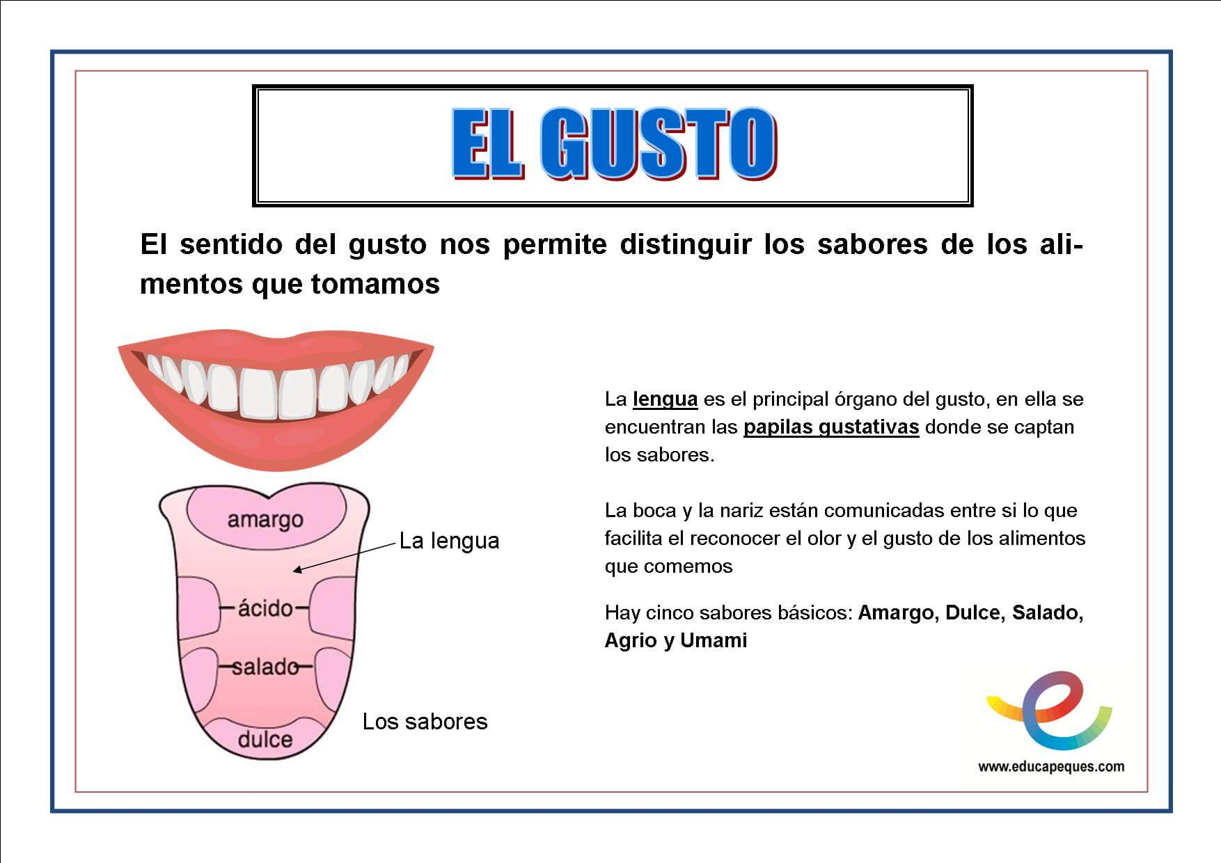 https://www.educapeques.com/wp-content/uploads/2013/10/el-gusto.jpg