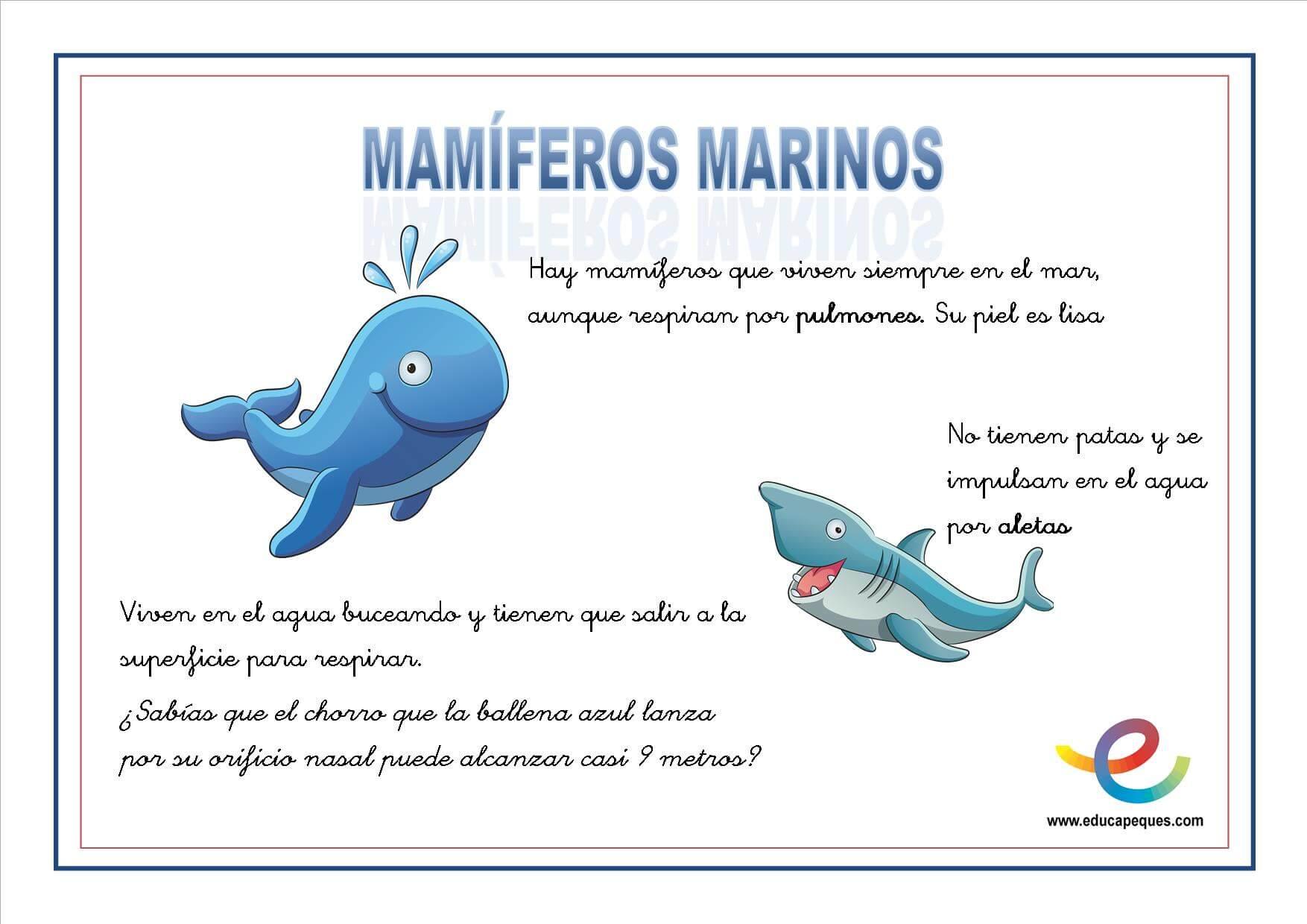 Encantador Dibujos Para Colorear De Animales Mamiferos | Colore Ar ...