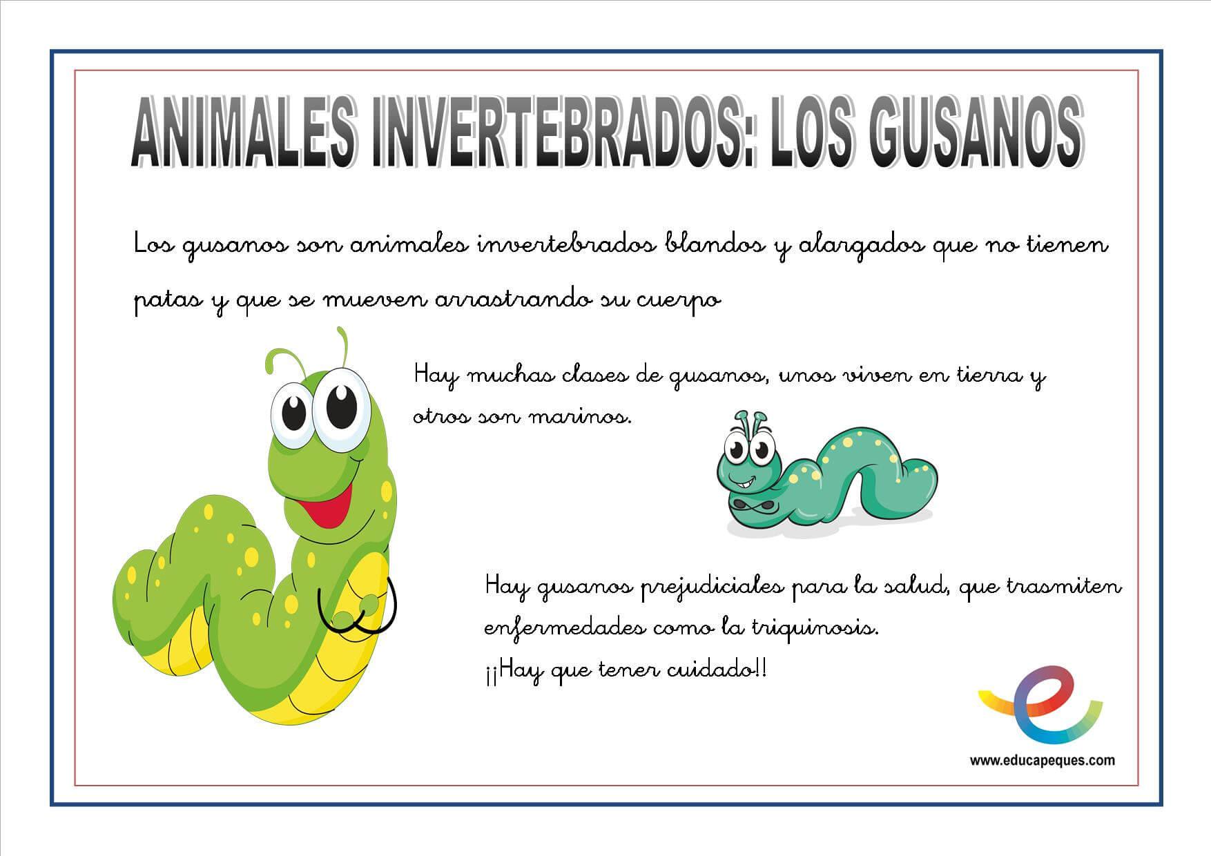 Fresco Imagenes Para Colorear De Animales Invertebrados | Colore Ar ...
