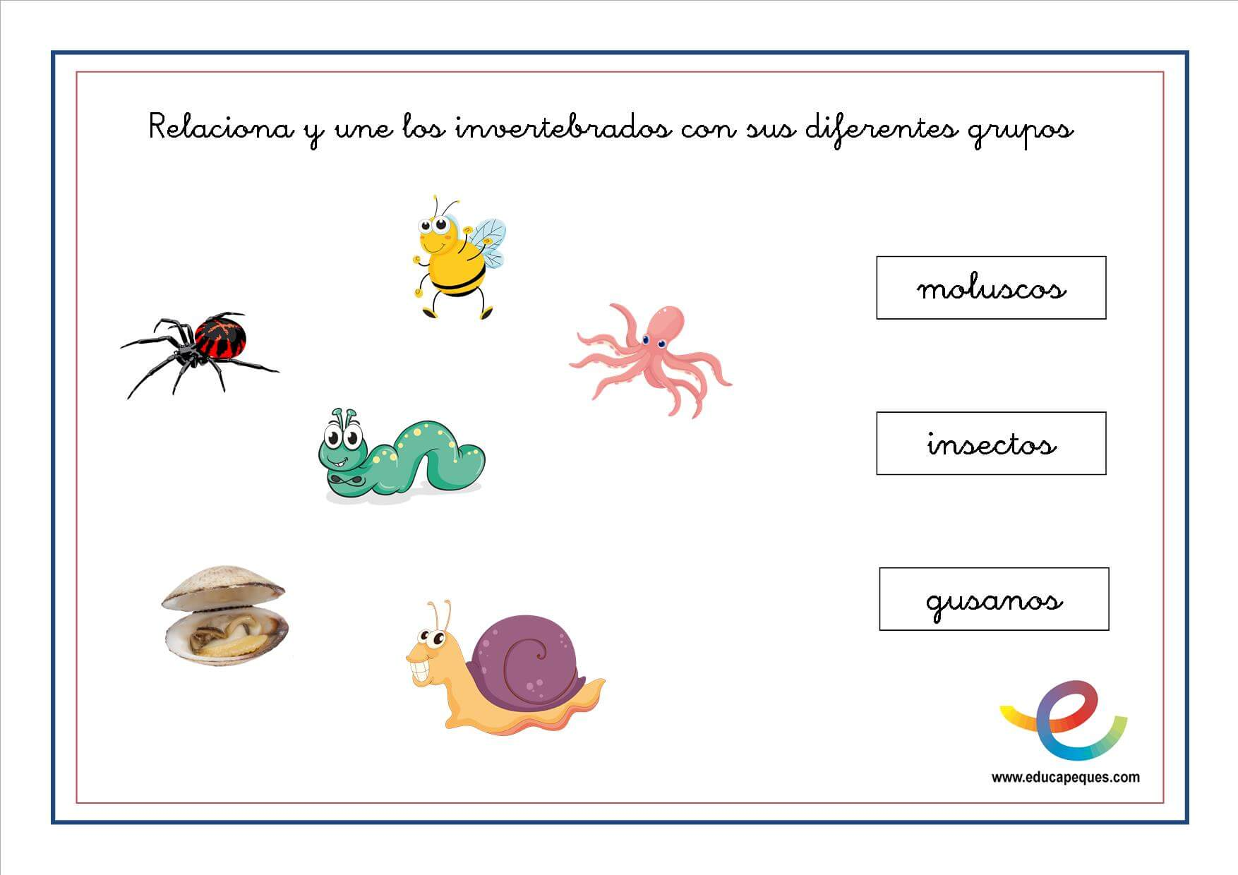 Animales Invertebrados Fichas ciencias naturales