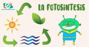 la fotosíntesis para niños de primaria