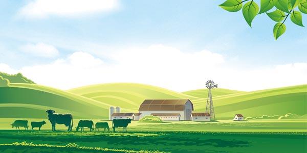 la vida en el campo