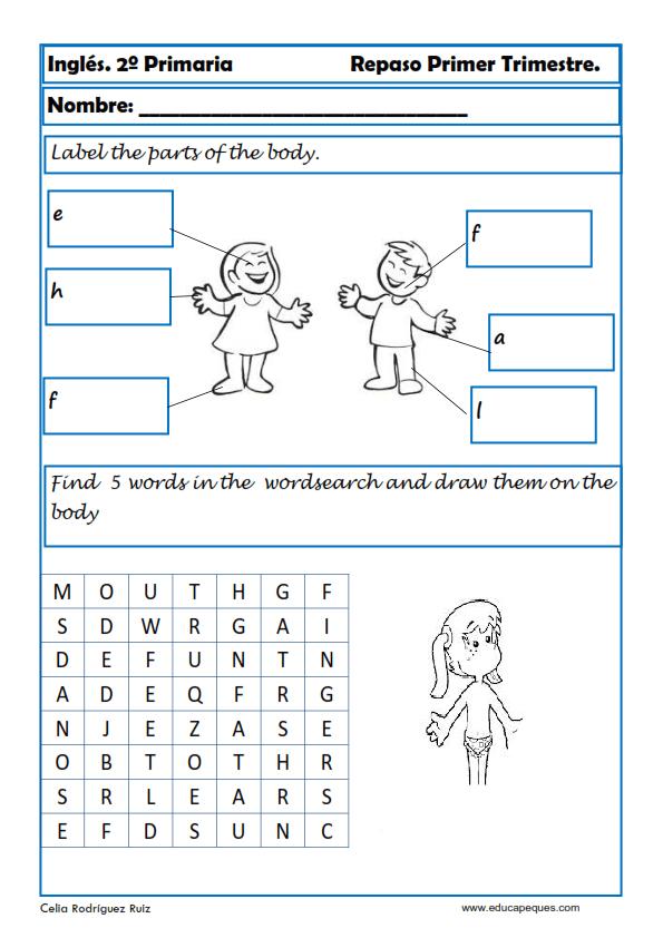 Ejercicios de inglés para segundo de primaria