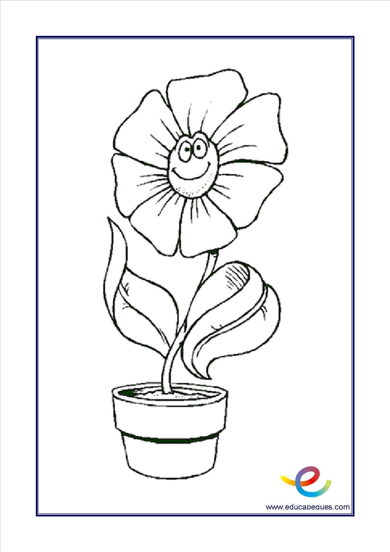 Flores Para Colorear Recursos Educativos