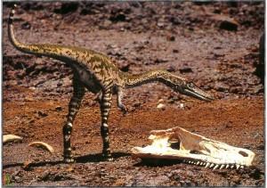 dinosaurios 08