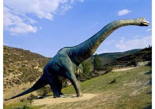 dinosaurios 16