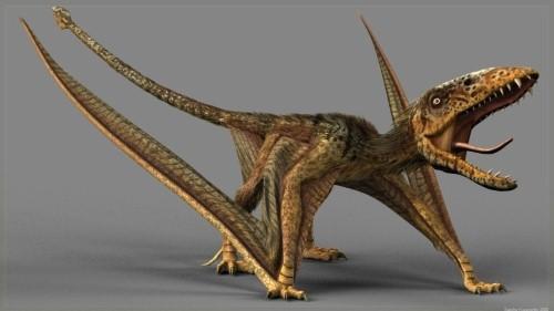 dinosaurios 22