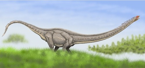 dinosaurios 26