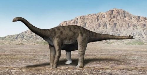 dinosaurios 29
