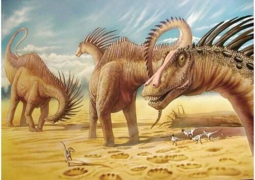 dinosaurios 31