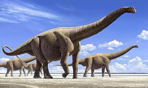 dinosaurios 35