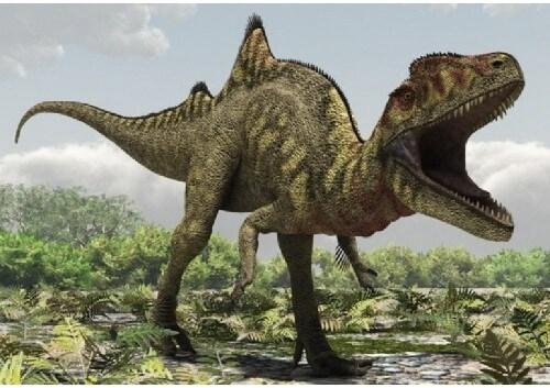 imagenes dinosaurios parte 2_004