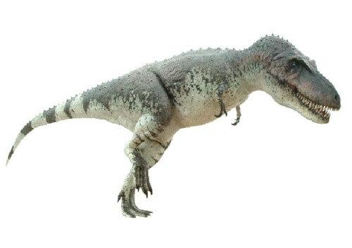 imagenes dinosaurios parte 2_006