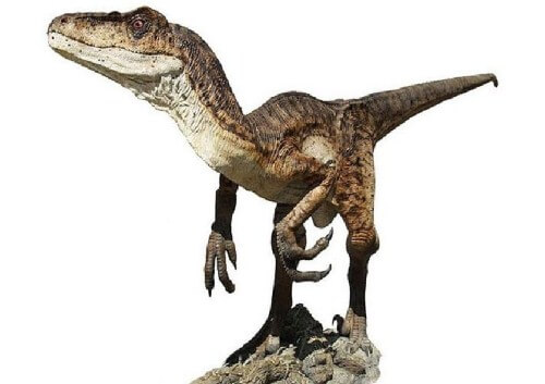 imagenes dinosaurios parte 2_008