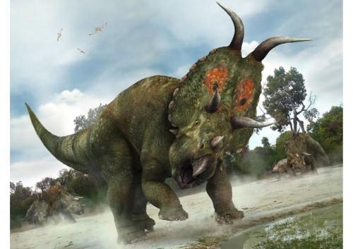 imagenes dinosaurios parte 2_009