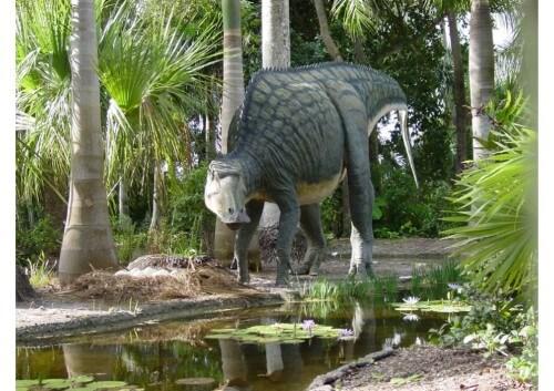 imagenes dinosaurios parte 2_012