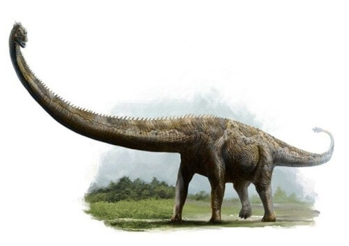 imagenes dinosaurios parte 2_033