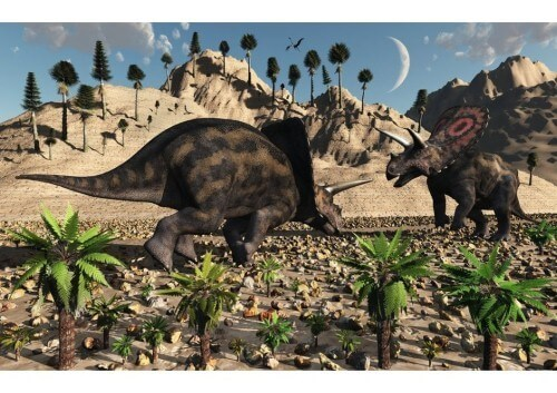 imagenes dinosaurios parte 2_041