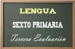 Lengua primaria 6-3