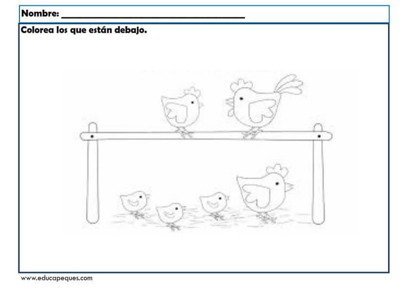 Fichas Conceptos Básicos Para Trabajar En Educación Infantil