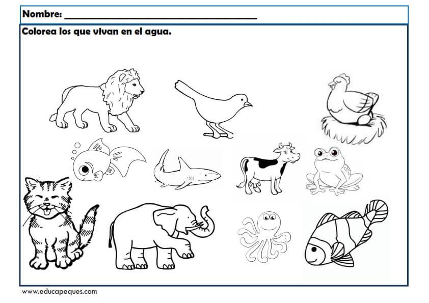 Fichas infantil: Los animales