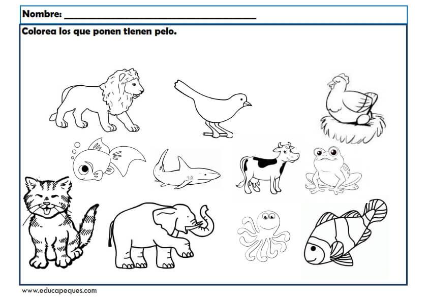 Fichas infantil Los animales