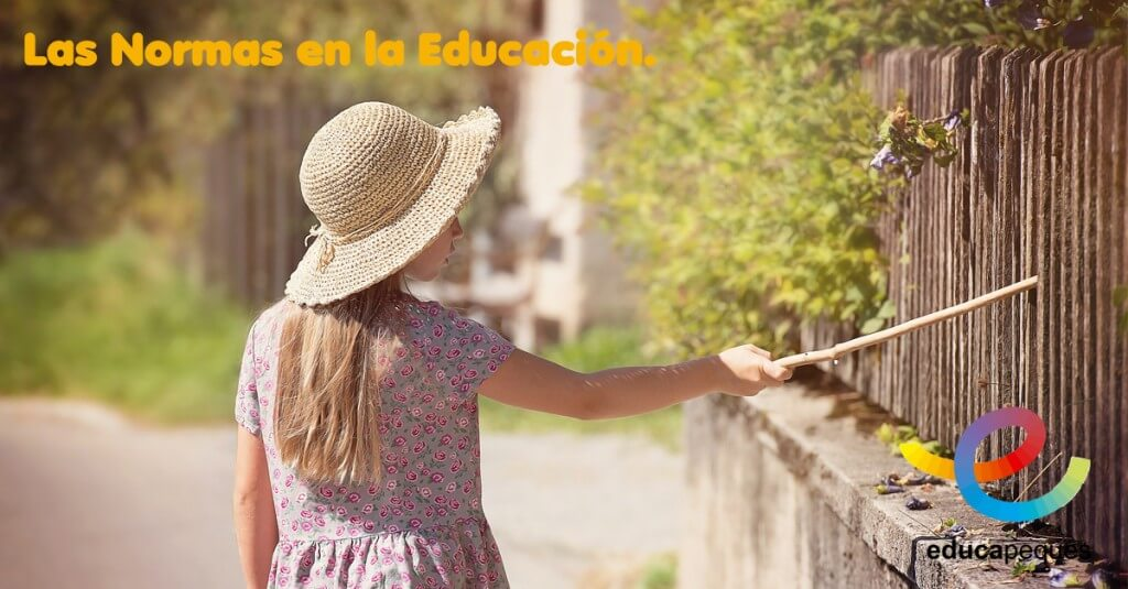las normas en la educación, educar, educación, aprender