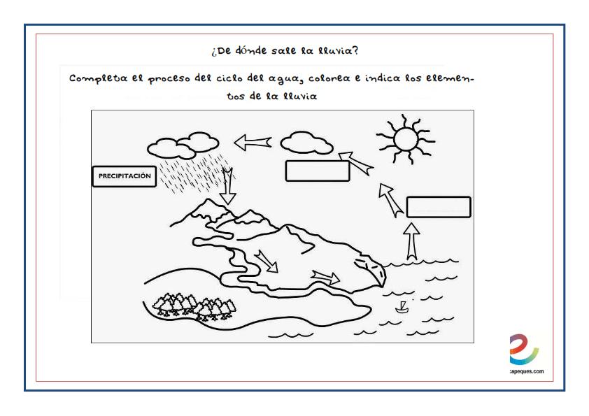Ciclo Del Agua De Dónde Sale La Lluvia