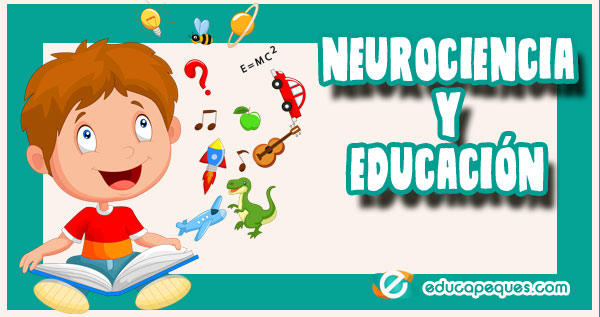 neurociencia y educación, neurociencia y aprendizaje