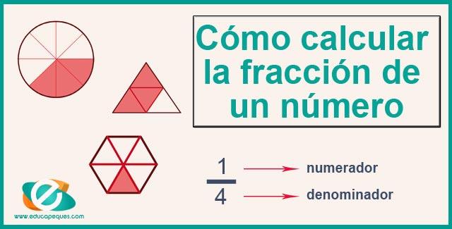 Cómo Calcular La Fracción De Un Número Educapeques