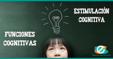 Funciones cognitivas en los niños. Desarrollo de las funciones cognitivas