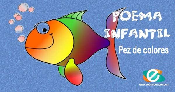 Pez de colores, pez arcoiris