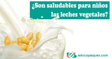 ¿Son las leches vegetales saludables para los niños?