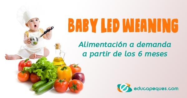 Baby Led Weaning, Alimentación a demanda