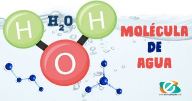 Molécula de Agua: Características físicas y Químicas