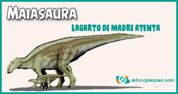 Maiasaura, Lagarto de madre atenta