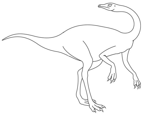 Ornithomimus colorear