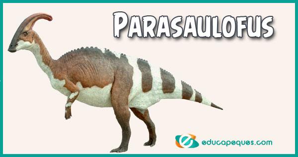 Parasaulofus