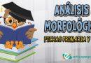 Análisis morfológico ejercicios para Primaria y la ESO