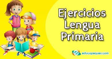 ejercicios de lengua primaria