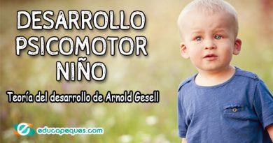 Desarrollo psicomotor del niño. La teoría del desarrollo de Arnold Gesell