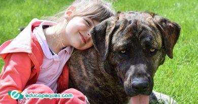 Como ayudan las terapias con animales a los niños con ADD