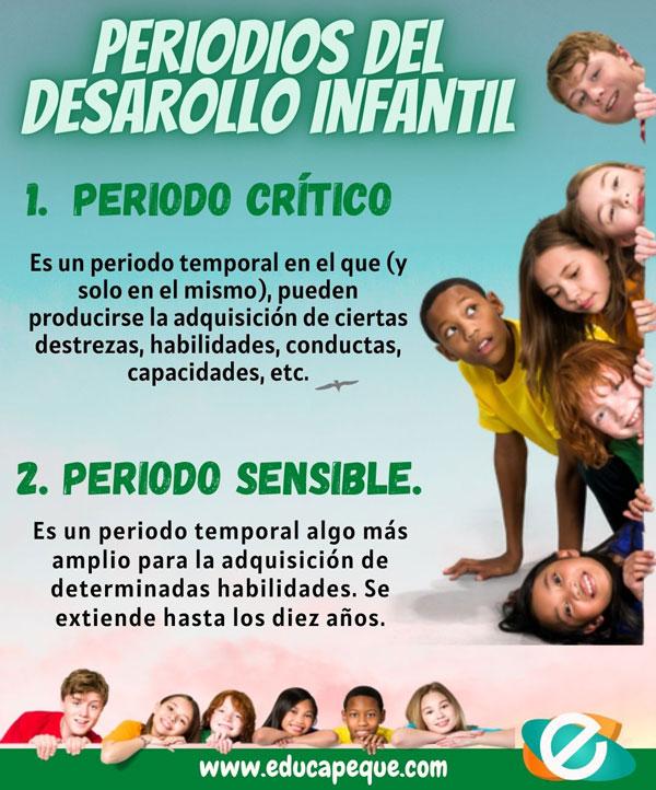 periodos del desarrollo infantil