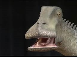 Características del dinosaurio Nigersaurus taqueti